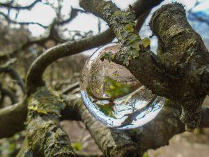 spiegel-7